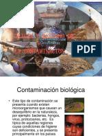 Daniel Loizzo Origen y Destino de La Contaminacion