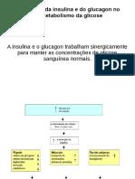 insulina+e+glucagon+2017.2.pdf