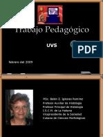 Trabajo Pedagógico Metodologico1