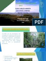 Bosques Humedo Tropical