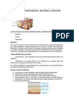 Tema3.docx (1).pdf