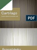 Cartílago