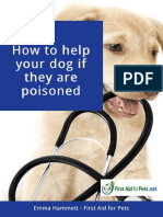 How-to-help-your-dog-if-they-are-poisoned-pdf.pdf
