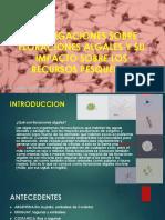 Investigaciones Sobre Floraciones Algales y Su Impacto Sobre