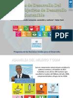Objetivos de Desarrollo Sostenible y Milenio