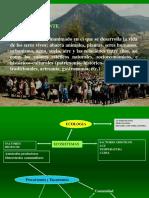 2° S El amb. Ley del Mínimo y la Tolerancia.pptx