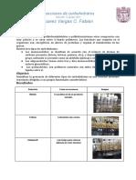 Reacciones de Carbohidratos (1).Docx
