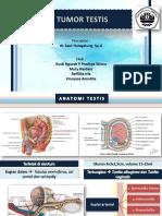Tumor Testis Fix