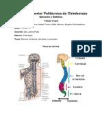 Psicologia (Nervios)(1)