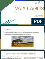 Sabana y Lagos