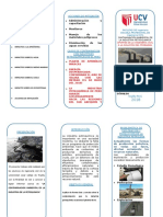 TRIPTICO CANTAMINACIÓN AMBIENTAL DE LA INDUSTRIA PETROQUIMICA.docx
