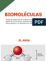 2 BIOMOLECULAS