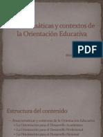 Areas de Estudio de La Orientacion Educativa091002143254-Phpapp02