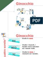 Presentazione Ginocchio.ppt