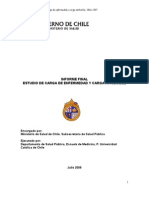 Informe Final Carga Enf 2007