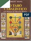 RobertWang-OTarCabalstico_text.pdf