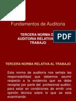 Fundamentos de Auditoria_Nagas Del Trabajo