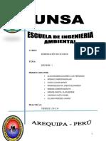 Informe 1 Remediacion Suelos Ing Ambiental