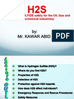 Hydrogen Sulfide (h2s) Gas Safety