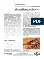 Subterranean Termite Behaviour