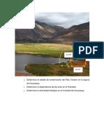 Determinar el estado de conservación del Pato Creston en la laguna de Huacarpay.docx