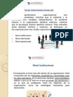 Diferentes Niveles de Estructuras Organizacionales