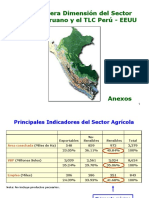 Impacto_TLC_Sector_Agricola-Anexos.ppt