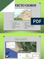 265298468-Proyecto-Olmos.pdf