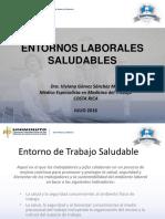 2.Entornos Laborales Saludables - Dra. Viviana Gomez Sanchez Msc
