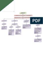 Mapa Conceptual Psicologia