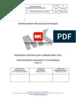 P-PR 17 Andamios y Plataformas PDF