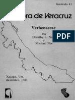 Flora de Veracruz Verbenacea