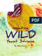 Isolation Wild Yeast
