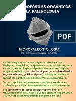Micropaleontología10. Los Microfósiles Orgánicos de La Palinología