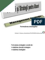 MS P4 Formularea Strategiilor