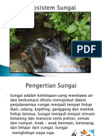 258821338-ekosistem-sungai.ppt
