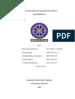 Leptospirosis (Kelas 2016d Raisis f d a, Dede a p. Ni Wayan Intan m, Vanesya y, Sandhika a, Ib Nararya Primastana a)