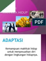 adaptasi