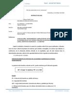 Informe 2018 Gallo