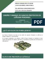 Diseño y Manejo de Bancos Proteicos en Leñosas