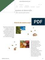 Centro de Innovación Del Cacao