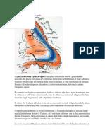 Placca Adriatica o Placca Apula.pdf