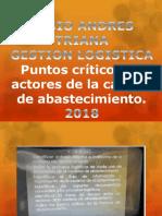 PUNTOS CRITICOS.pptx