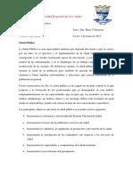 consulta_LuisLuna.docx