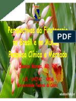 FITOTERAPICO DESENVOLVIMENTO.pdf