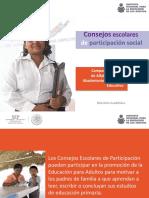 Consejos Escolares de Parcipacion Social PDF
