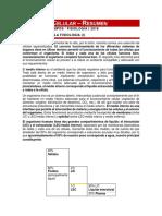 Introducción a La Fisiología - Resumen