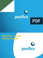 PPT Pacifico Capacitacion PUENTE GRUA