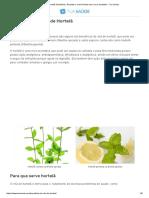 Chá de Hortelã_ Benefícios, Receitas e Como Plantar Essa Erva Aromática - Tua Saúde