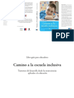 Inclusion.pdf